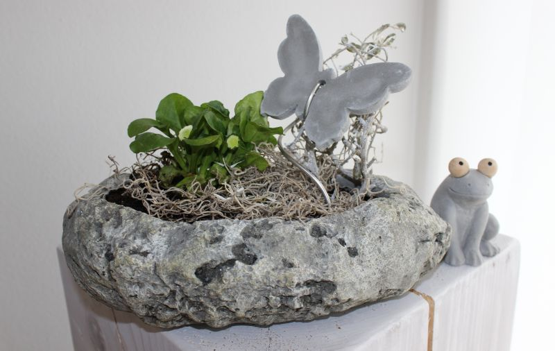 TD160 - Pflanzschale aus Polystein! Preis 12,90€ ( Preis ohne Blumen und Deko) Größe 28x17x8cm Frosch 4,90€