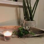 TD87 - Kokosblatt als Tischdeko! Kokosblatt gebeizt, dekoriert mit natürlichen Materialien, einer kleinen Eule und künstlichen Sukkulenten! Preis 44,90€ - Breite ca 70cm