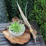 NB3 – Baumrinde natürlich dekoriert, mit einer Betonschale bepflanzt mit Sukkulenten! Preis 19,90€