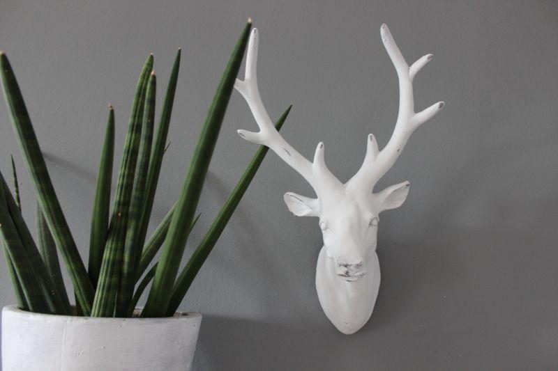 TI005 - Hirschkopf aus Polystein! Preis 24,90€ Höhe ca. 43cm